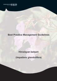 Best Practice Management Guidelines Himalayan balsam - Invasive ...