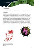 Best Practice Management Guidelines Himalayan balsam - Invasive ... - Page 2