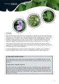 Best Practice Management Guidelines Himalayan balsam - Invasive ... - Page 3