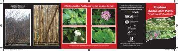 Invasive Species Pocket Guide.indd - Invasive Species Ireland