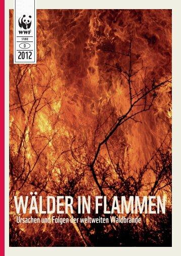 120809 wwf waldbrandstudie