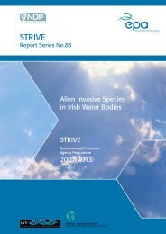 STRIVE Synthesis Report - EPA