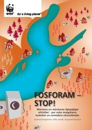 gramata_par Fosforu.pdf