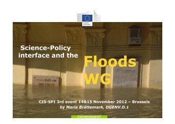 SPI and the floods WG - Onema