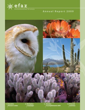 to download our 2009 Annual Report - Environmental Fund for Arizona
