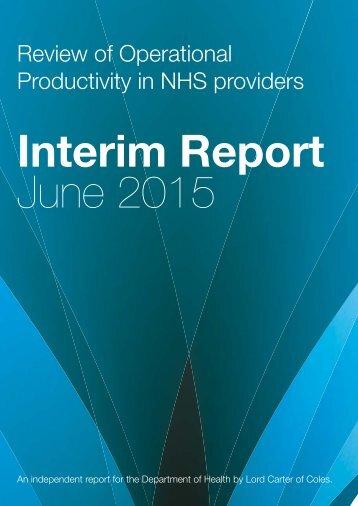 carter-interim-report