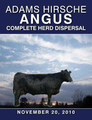 View CATALOG - Hirsche Herefords & Angus