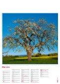 Gesundes Leben – Gesunde Natur - Page 6