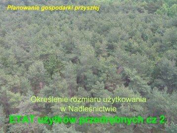 Etaty przedrębne cz.2