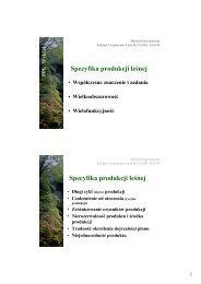 Specyfika produkcji leśnej