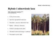 Rębnie - Stary serwis Wydziału Leśnego SGGW