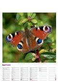 Gesundes Leben – Gesunde Natur - Page 5