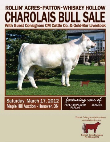 Click here to download pdf file (2 mb) - Charolais Banner