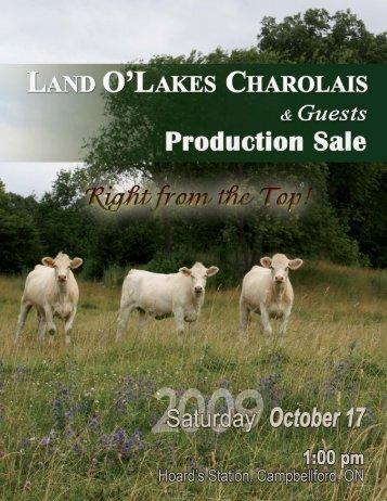 Land O'Lakes Charolais - Charolais Banner