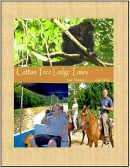 Cotton Tree Lodge Tours