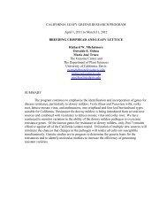 Lettuce Breeding, UCD - California Leafy Greens Research Program