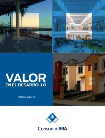 Reporte anual 2008 - Reforma