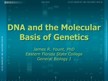 DNA and the Molecular Basis of Genetics - Dr Petries Course Page