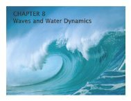 Lecture 8 - Waves