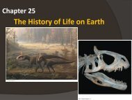 Chapter 25 - Origin of Life on Earth