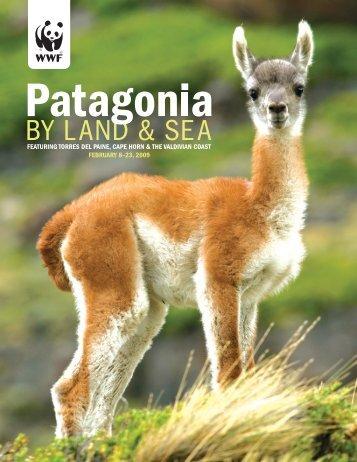 WWF Patagonia