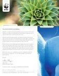 WWF Patagonia - Page 2