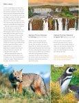 WWF Patagonia - Page 5