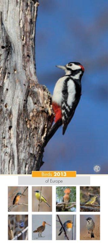 Birds 2013