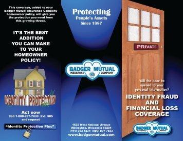 Identity - Badger Mutual Insurance Company