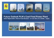 Future Outlook PLN's Coal Fired Power Plant