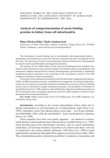 Analysis of compartmentation of auxin binding proteins in kidney ...