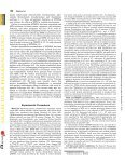 Differences in Folylpolyglutamate Synthetase and Dihydrofolate ... - Page 2