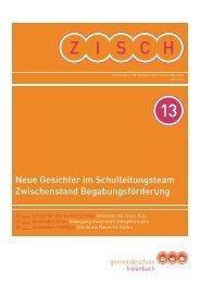 Ausgabe 13 2011 [PDF, 1.00 MB] - Gemeinde Freienbach
