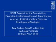 UNDP Support for the Formulation, Financing, Implementation and ...