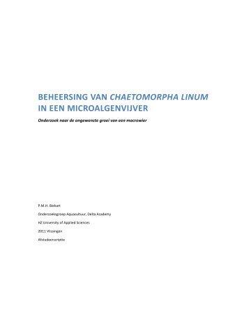 beheersing van chaetomorpha linum in een microalgenvijver