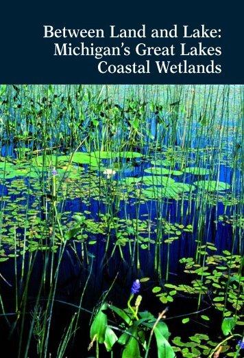 Michigan's Great Lakes Coastal Wetlands - Michigan Water ...