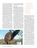 Cupins - Revista Pesquisa FAPESP - Page 3