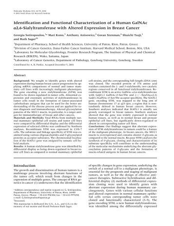 Identification and functional characterization of a human GalNAc a2 ...