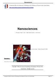 Nanosciences - Mission pour la Science et la Technologie ...