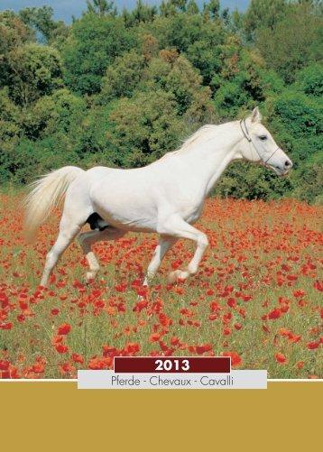 Pferde - Chevaux - Cavalli
