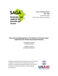 SAGA Working Paper June 2005 Preliminary draft Do not cite ...