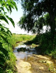 Outreach and Education Strategy - Plum Creek Watershed Partnership