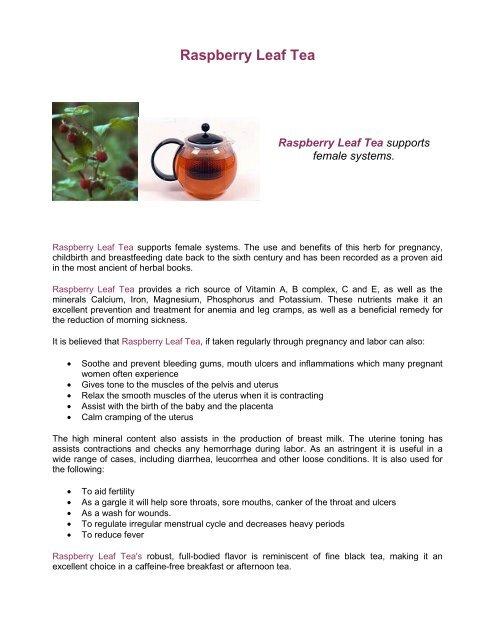 Raspberry Leaf Tea pdf - SingaporeMotherhood