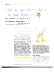 Clay minerals to fight footpad lesions - Zeolite Products