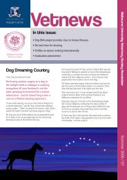 In this issue: Dog Dreaming Country - Faculty of Veterinary Science
