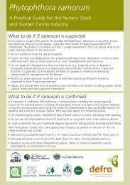 Phytophthora ramorum – A4 summary of practical - PlantNetwork