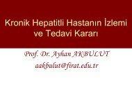 Kronik hepatitli hastanın izlemi ve tedavi kararı - VHSD