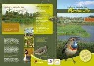Marionville Marionville - Saint-Ghislain