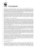 Żarówki, świetlówki, diody - WWF - Page 4