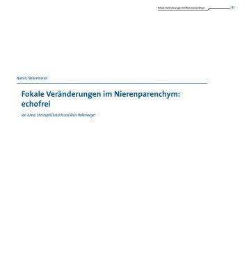 Fokale Veränderungen im Nierenparenchym: echofrei